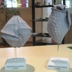 "3D printing: ""micro-algues"""