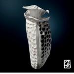 """Modélisation 3D:""""micro-algues"""""""