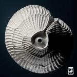"3D printing:""micro-algae"""