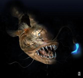 "3D modeling:""monkfish"""